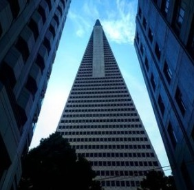 What Kind of Company Is Transamerica